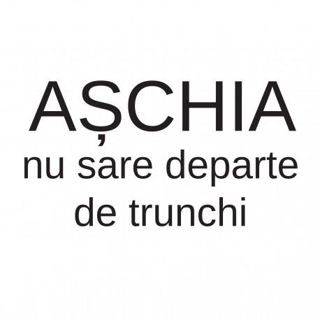 Așchia nu sare departe
